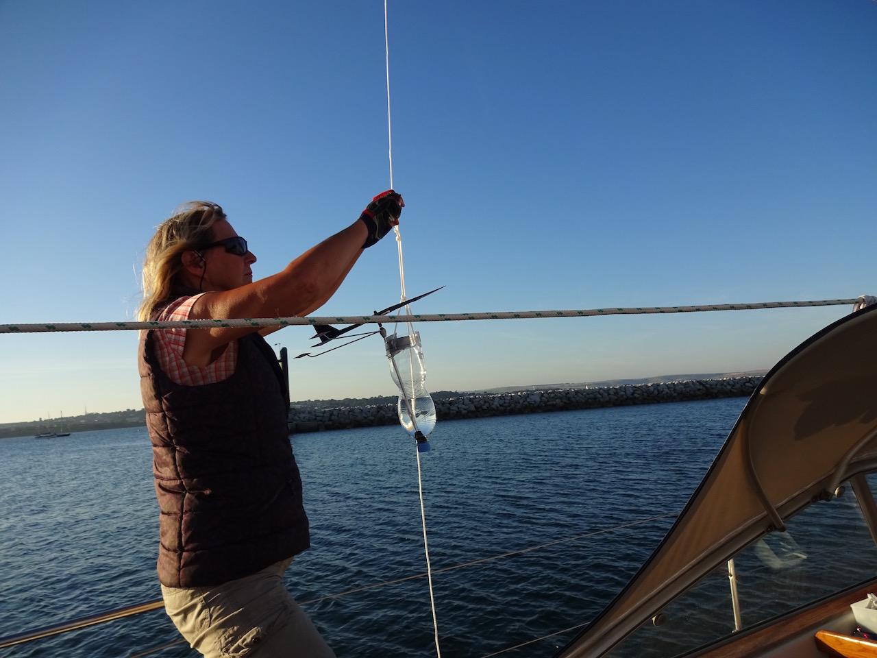 Windex im Wasser - damit sie der Wind nicht wegweht