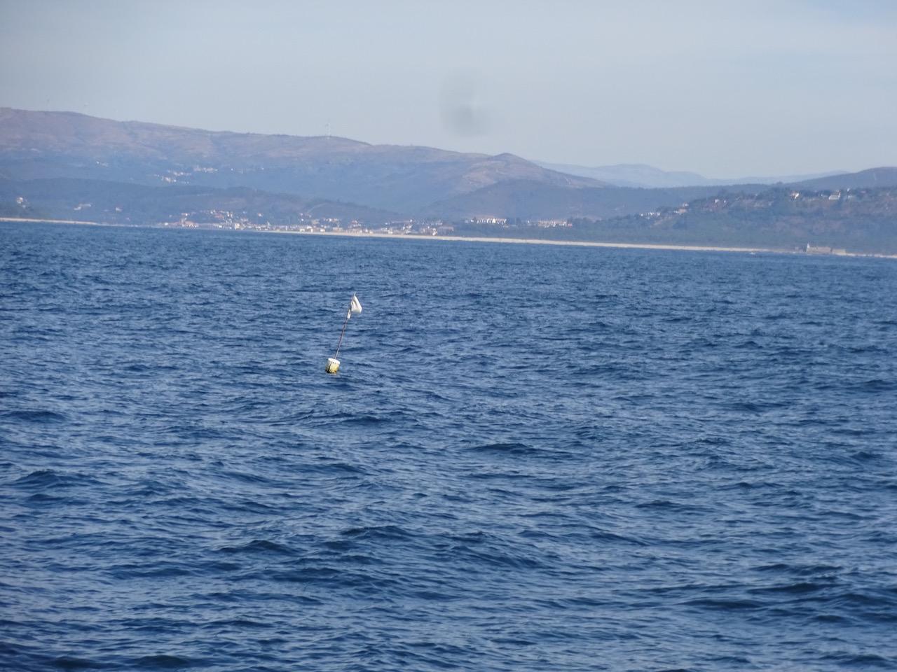auf diese kleinen Fischerfähnchen müssen wir in Portugal ganz besonders achten - es gibt hunderte :-(