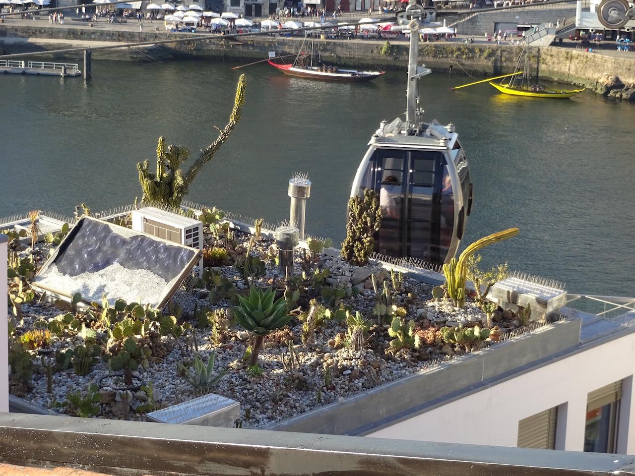 Dachbepflanzung mit Kakteen, im Hintergrund die Seilbahn und der Rio Doro