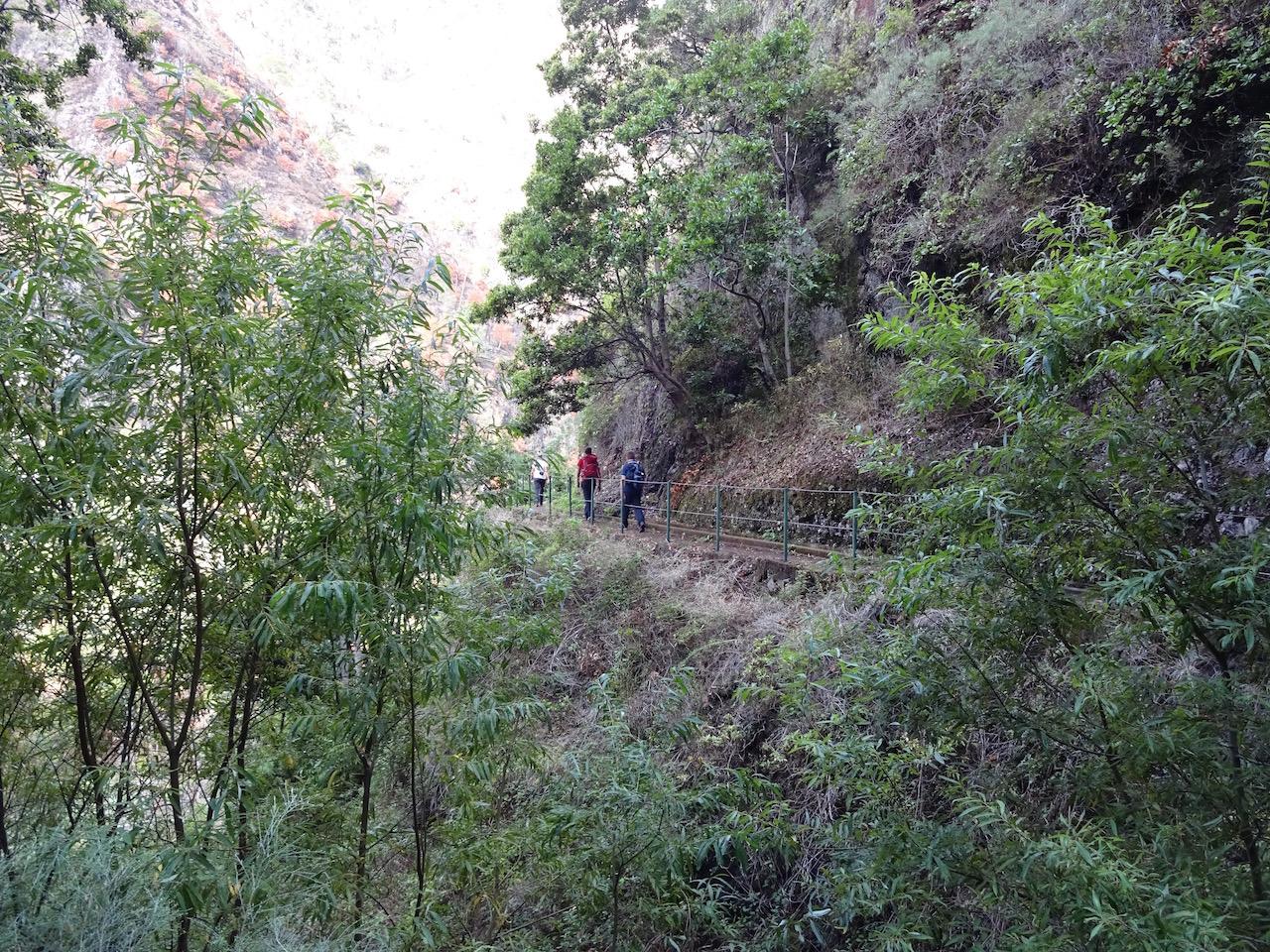 die Levada windet sich am Hang entlang