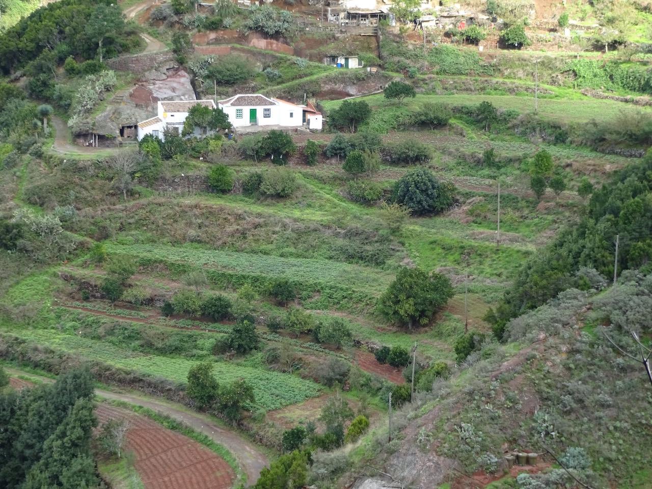 es gibt viele Terrassenfelder entlang des Weges