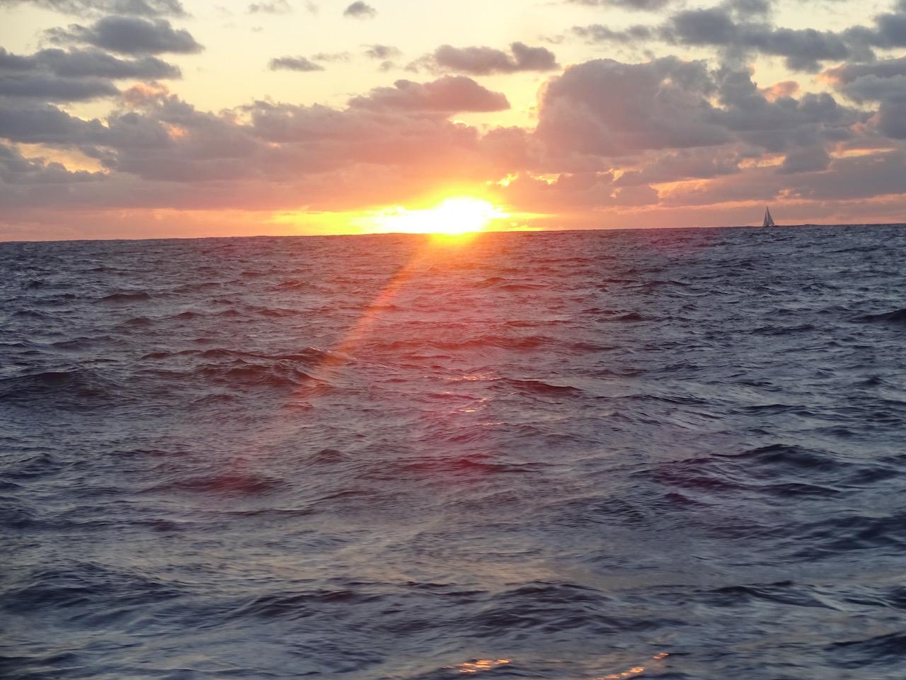 zum Sonnenuntergang sind wir noch immer in Sichtweite der svea - an Tag 2 trennen uns nach 150 sm nur gut 1 Kilometer