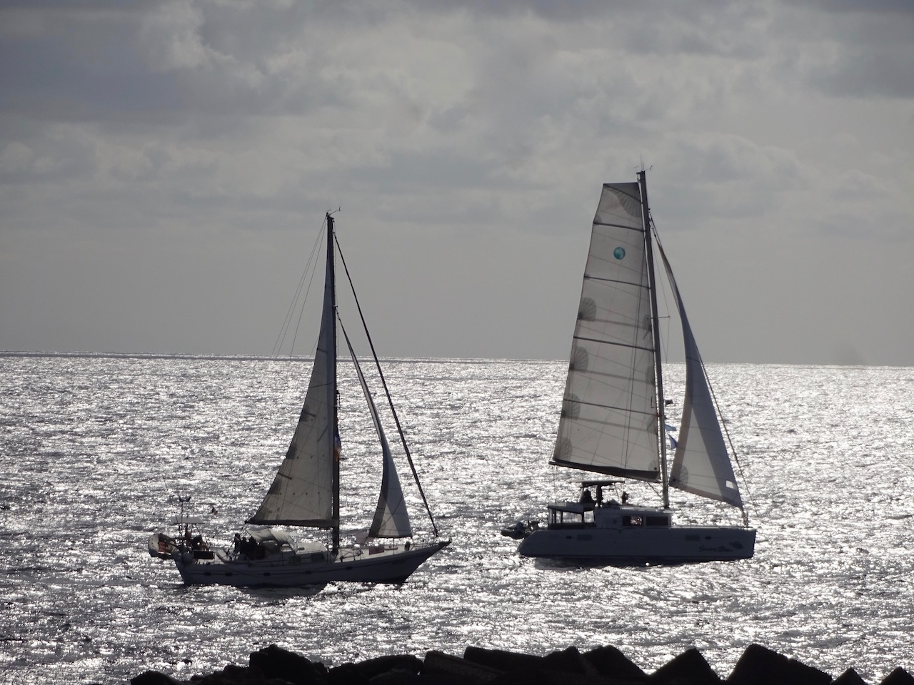 Foto vom Start der Jimmy Cornell Regatta nach Barbados